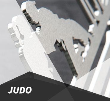 Judo Medal Hanger and Medal Display from The Runners Wall
